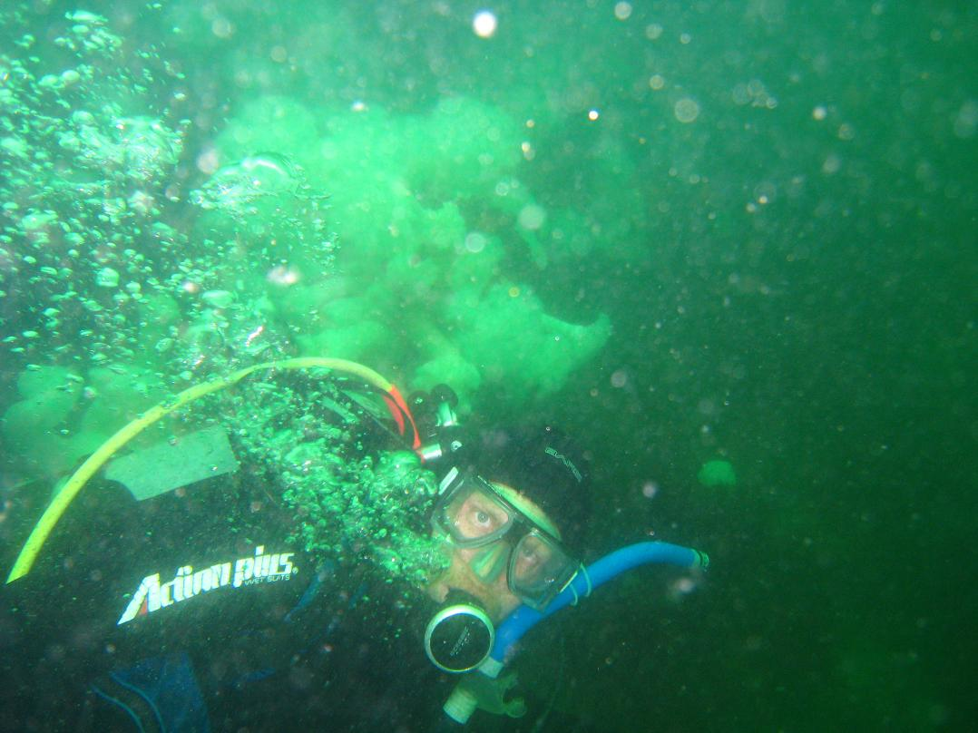Derek Diving